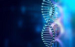 Aerpio Pharmaceuticals And Aadi Biosciences Enter Merger