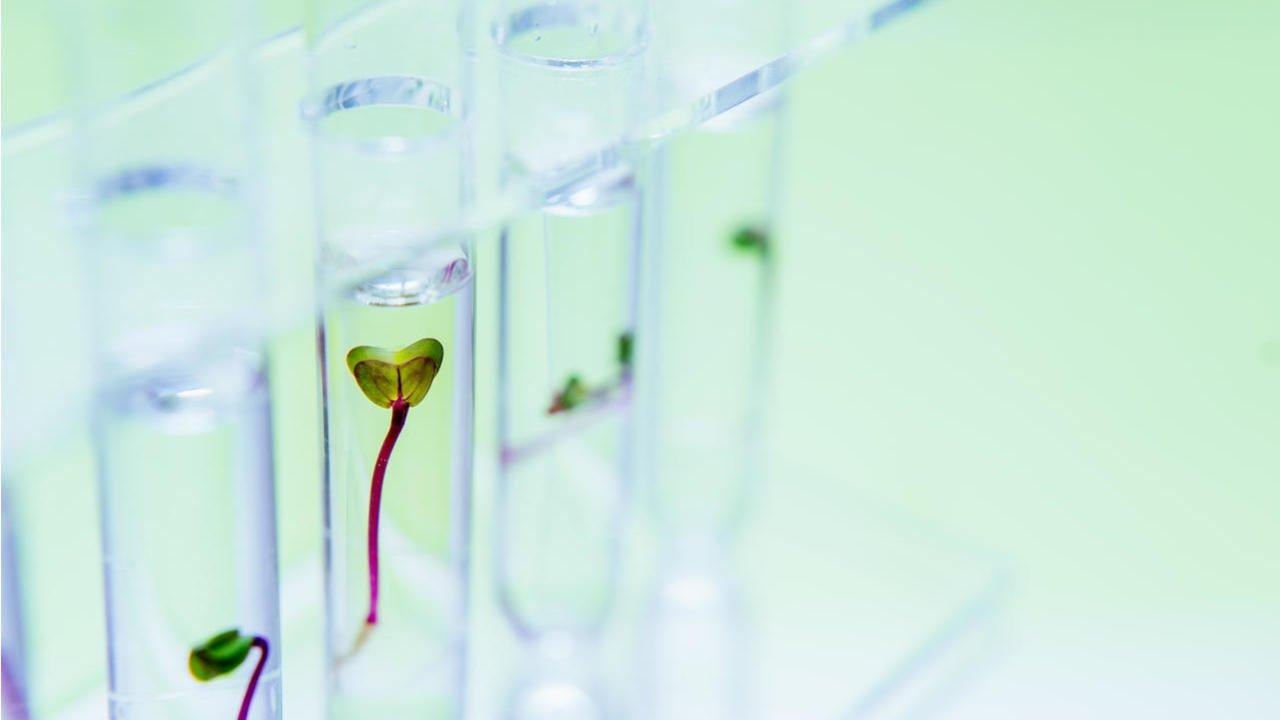 Oncolytics Biotech Inc Reports Q1 Development