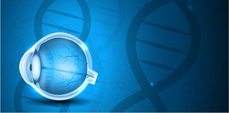 New Gene Therapy Improves Eyesight